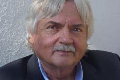 Wilfried Bommert