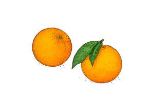Orange Weltacker