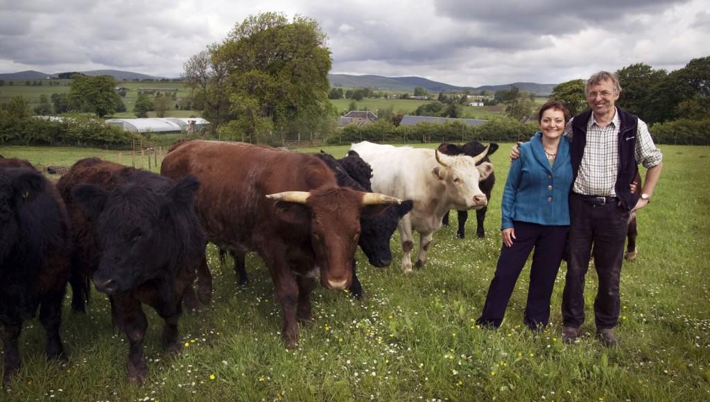 whitmuir farm