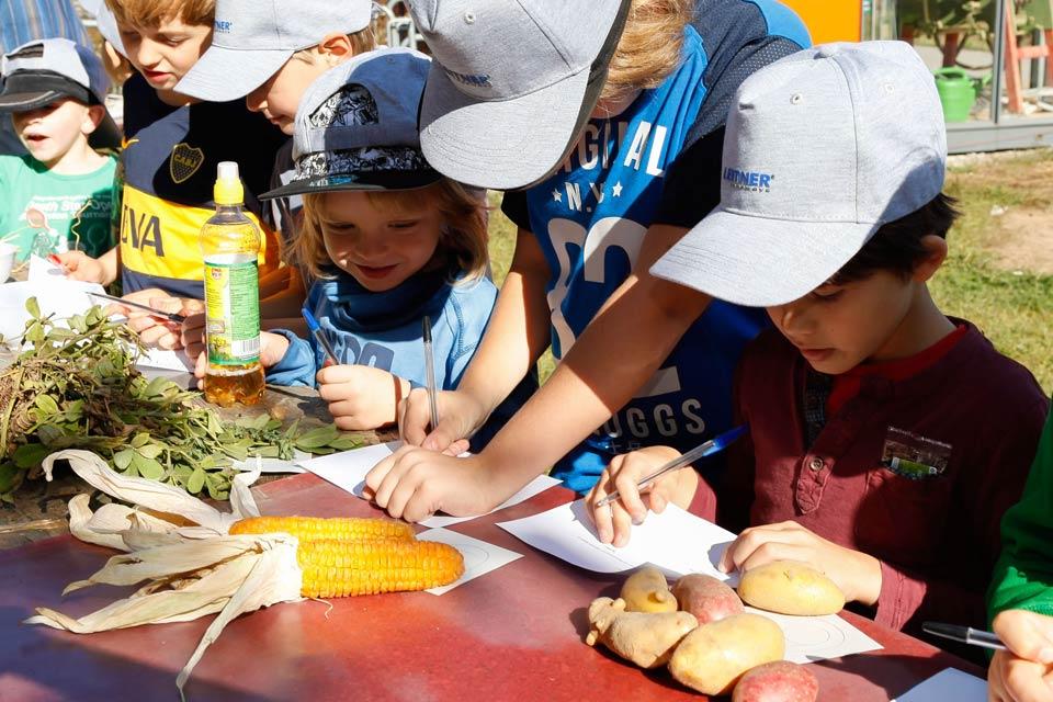 Kinder entdecken die Ackerkulturen des 2000m2-Weltackers