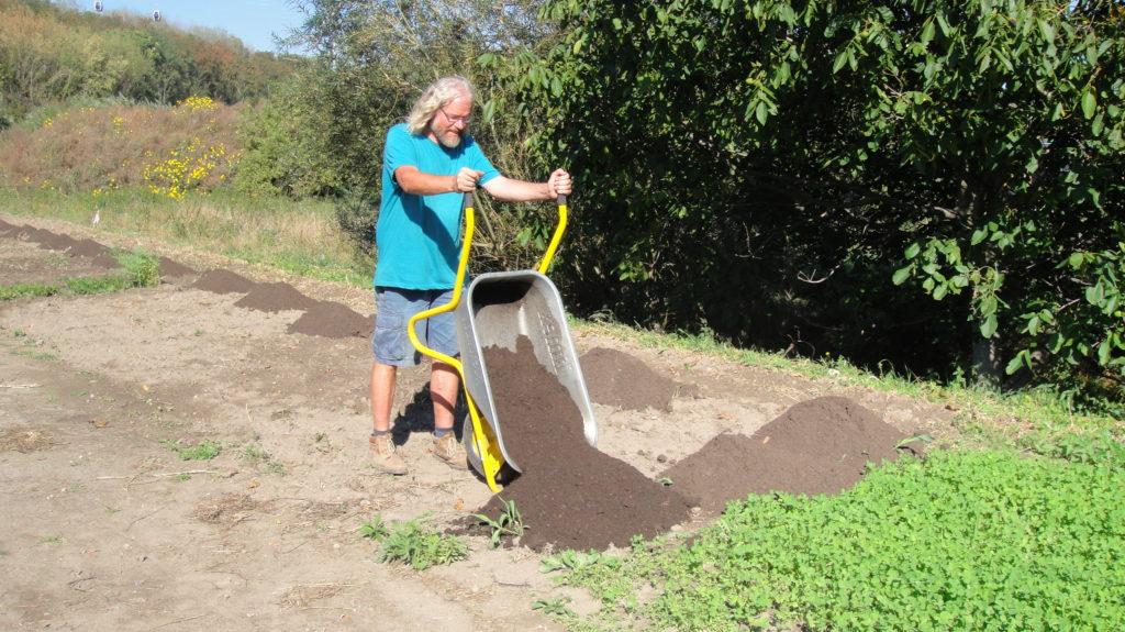 Kompost und Regenwurm