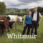 Whitmuir